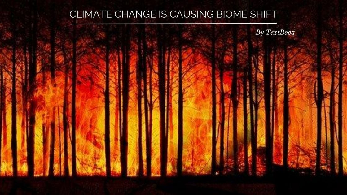 Climate Change is Causing Biome Shift