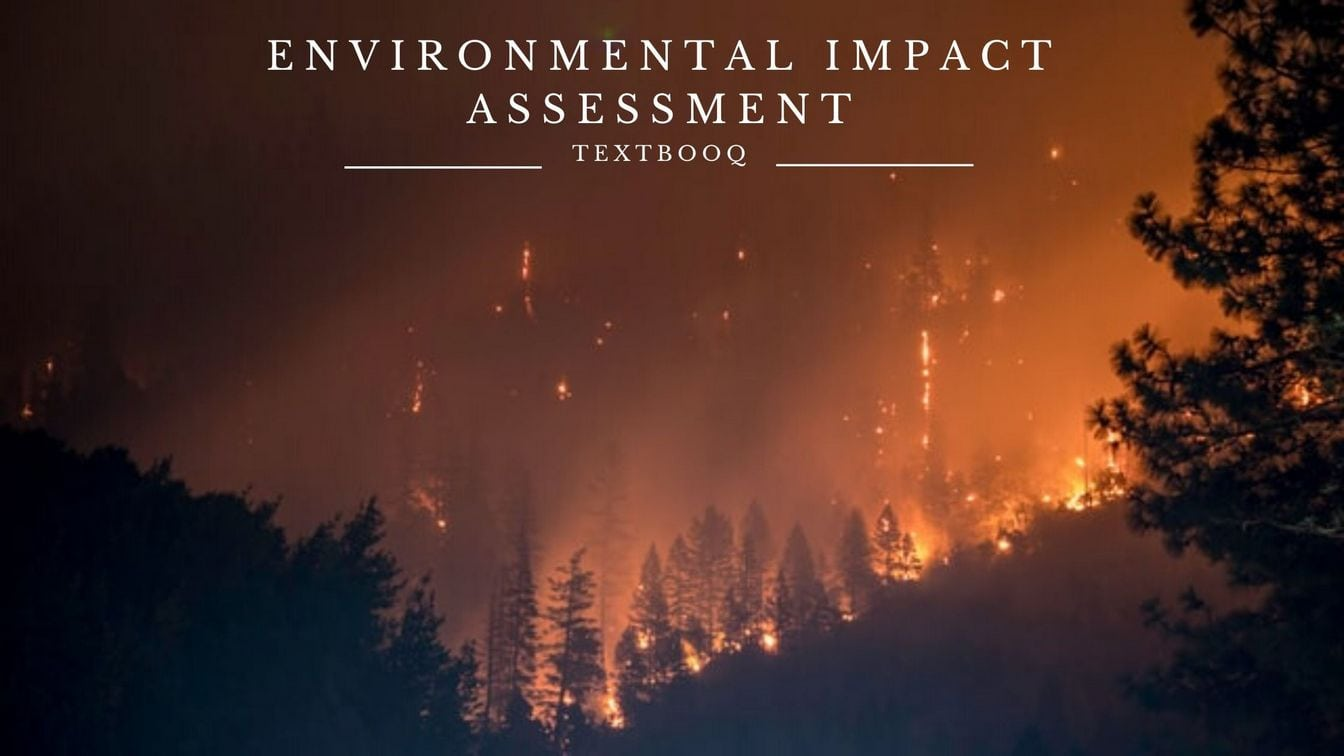 Decoding Environmental Impact Assessment (EIA)