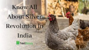 Know All About Silver Revolution in India